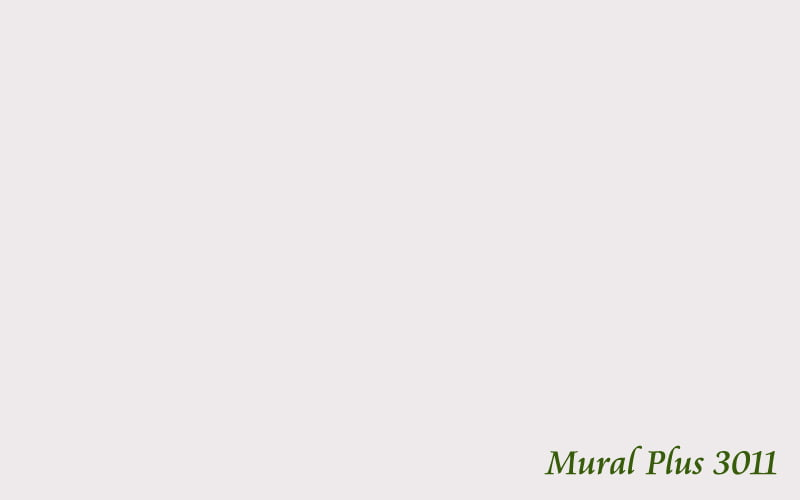 Mural Plus 3011