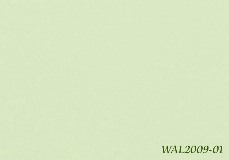 medistep wall WAL2009-01