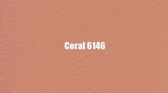Coral 6146