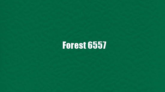Forest 6557